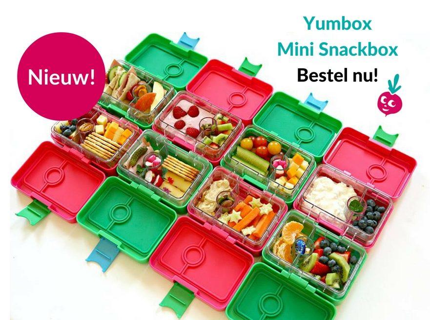 Yumbox Mini Snack Box
