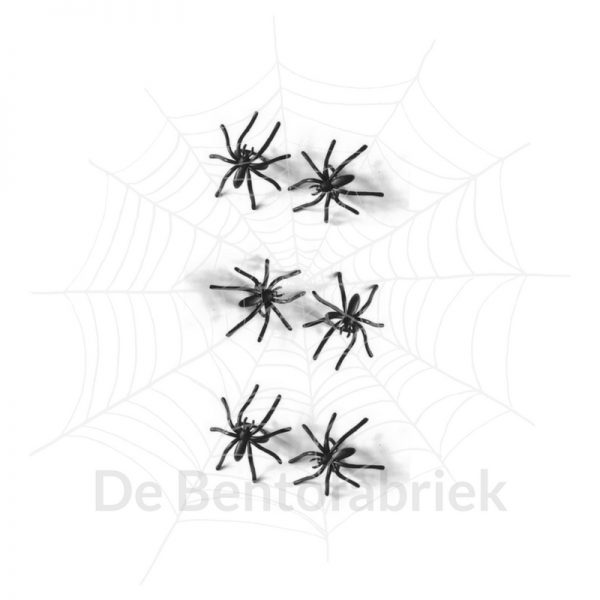 Spinnen Bento ringen