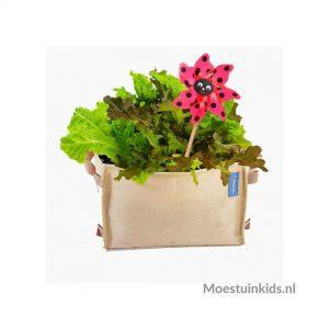 Plantzakken en growbags