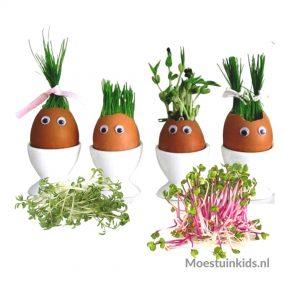 Kiemgroenten kweken